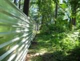 Під Києвом незаконно забудували ліс